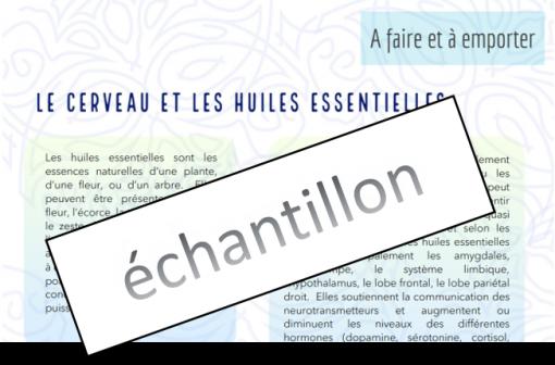 PDF – fichier pour imprimer étiquettes  inhalateurs personnels (PDF seul)